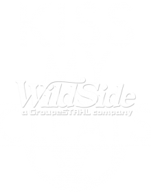 auto-sku-11x14-kiss-my-cleats-soccer-ball