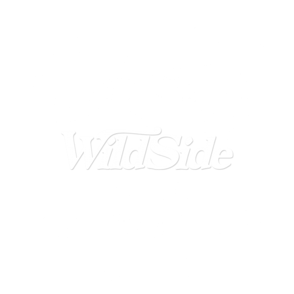 DAY OF THE DEAD SKULL WITH COWBOY HAT
