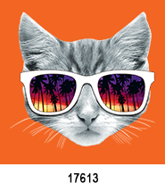 Cat Sunglasses T-Shirt Design Idea