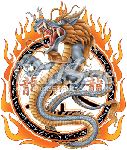 CIRCLE OF FIRE DRAGON