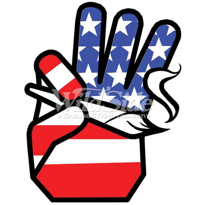 HAND WITH USA FLAG HOLDING JOINT