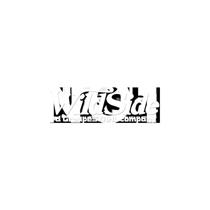 why not to ban guns