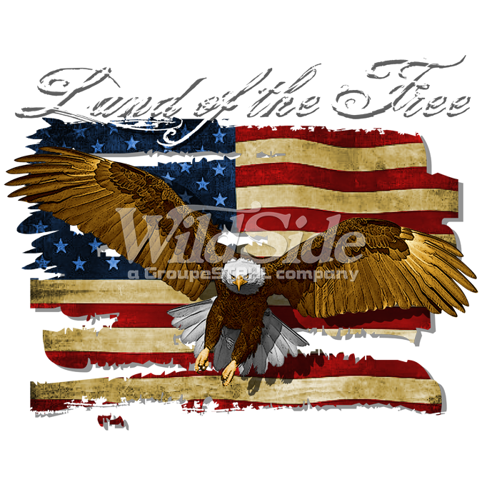 "Land Of The Free - U.S. flag with Eagle ""eagle, Flag, free, freedom, land, land of the free, Plastisol Transfer, u.s., u.s. flag, united states, Patriotism"""
