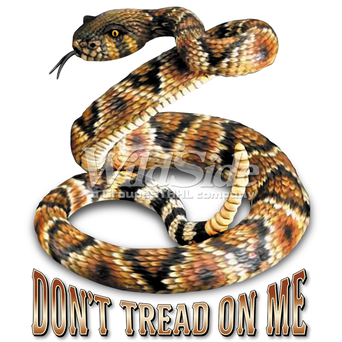 don t tread on me rattlesnake the wild side