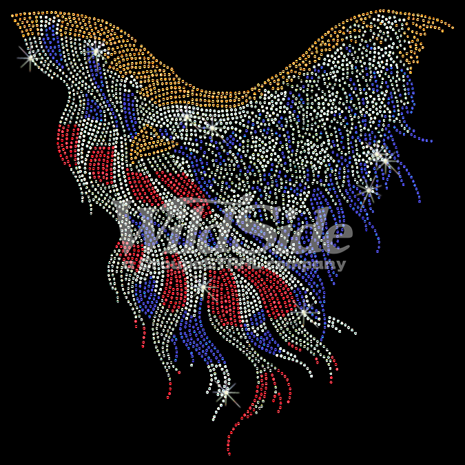 American Flag Eagle The Wild Side