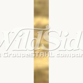 Gold Stars Hologram Foil